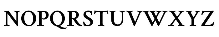 Crimson Text 600 Font UPPERCASE