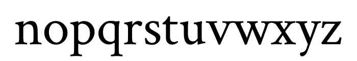 Crimson Text regular Font LOWERCASE