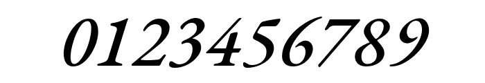 EB Garamond 500italic Font OTHER CHARS