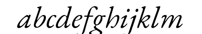 EB Garamond italic Font LOWERCASE