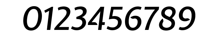 Expletus Sans 500italic Font OTHER CHARS