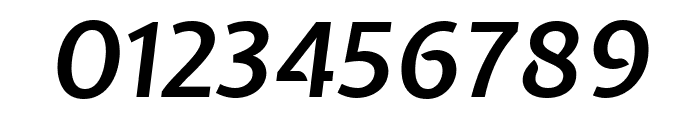 Expletus Sans 600italic Font OTHER CHARS