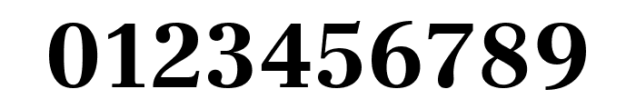 Frank Ruhl Libre 700 Font OTHER CHARS