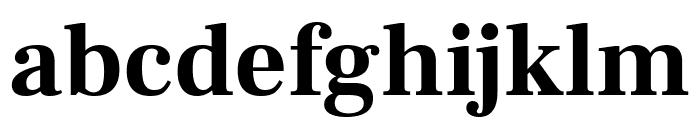 Frank Ruhl Libre 700 Font LOWERCASE