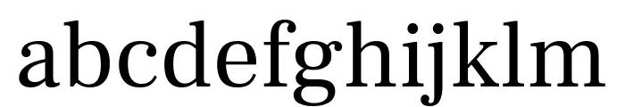 Frank Ruhl Libre regular Font LOWERCASE