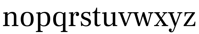 Frank Ruhl Libre regular Font LOWERCASE