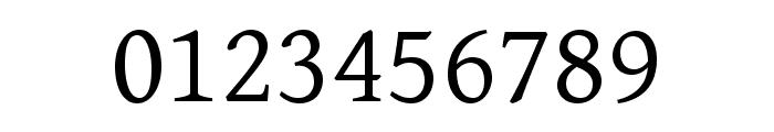 Gentium Basic regular Font OTHER CHARS
