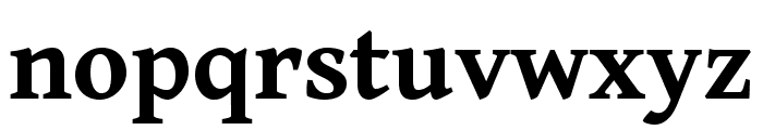 Gentium Book Basic 700 Font LOWERCASE