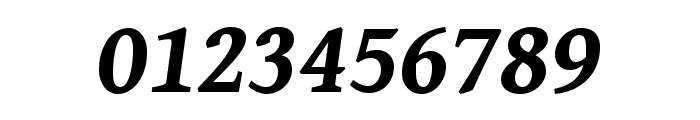 Gentium Book Basic 700italic Font OTHER CHARS