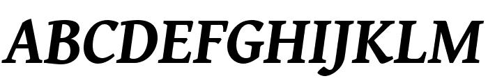 Gentium Book Basic 700italic Font UPPERCASE