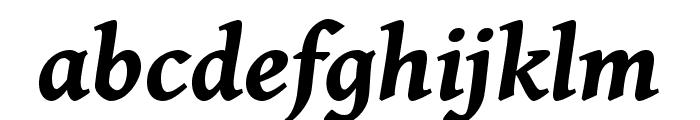 Gentium Book Basic 700italic Font LOWERCASE