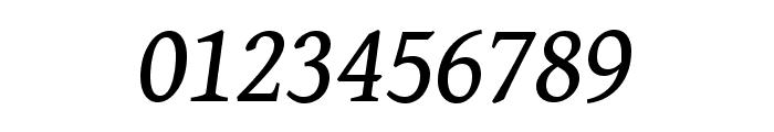 Gentium Book Basic italic Font OTHER CHARS