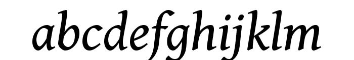 Gentium Book Basic italic Font LOWERCASE