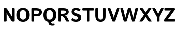 Istok Web 700 Font UPPERCASE