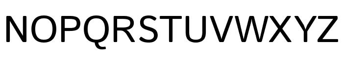 Istok Web regular Font UPPERCASE