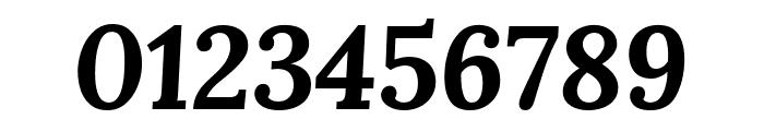 Lora 700italic Font OTHER CHARS