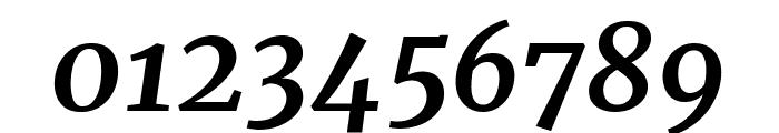 Merriweather 700italic Font OTHER CHARS