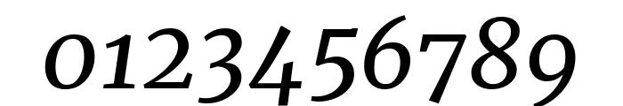 Merriweather italic Font OTHER CHARS