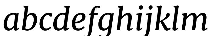 Merriweather italic Font LOWERCASE