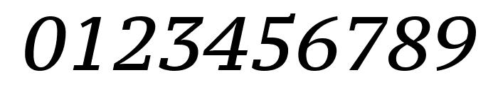 PT Serif Caption italic Font OTHER CHARS