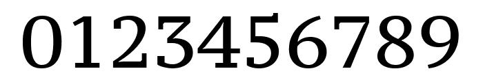 PT Serif Caption regular Font OTHER CHARS