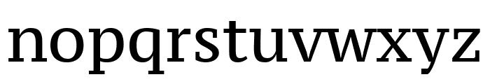 PT Serif Caption regular Font LOWERCASE
