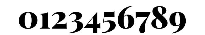 Playfair Display 900 Font OTHER CHARS