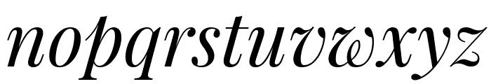 Playfair Display italic Font LOWERCASE
