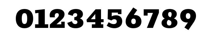 Rokkitt 900 Font OTHER CHARS