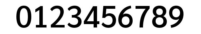 Sarabun 500 Font OTHER CHARS
