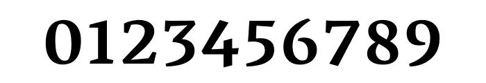 Vesper Libre 500 Font OTHER CHARS