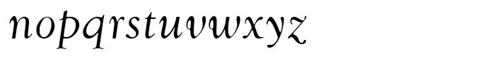 Goudy Swash Regular Italic Font LOWERCASE
