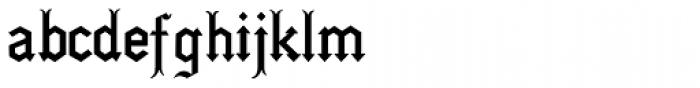 Gotica Moderna Font LOWERCASE