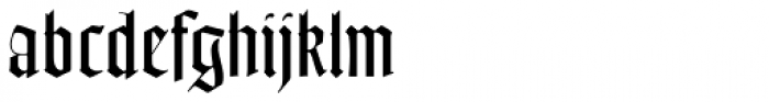 Goudy Text MT Std Font LOWERCASE