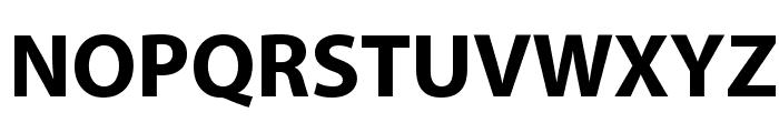 Grandesign Neue Roman Bold Font UPPERCASE