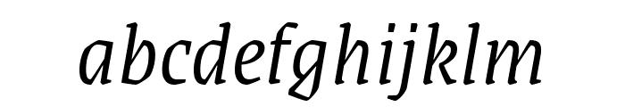Grenze Light Italic Font LOWERCASE