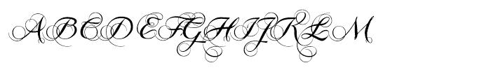 Grandezza Xtra Font UPPERCASE