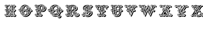 Grotesque Salloon Regular Font LOWERCASE