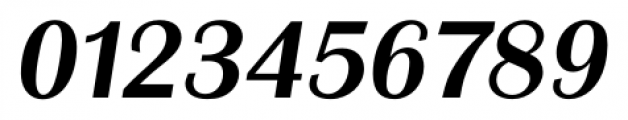 Grenoble Serial Medium Italic Font OTHER CHARS