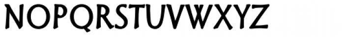 Granger Regular Font LOWERCASE