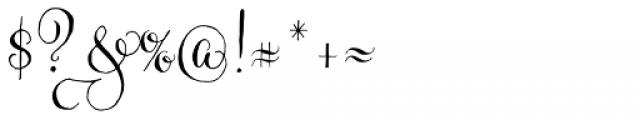 Gratitude Script Pro Font OTHER CHARS