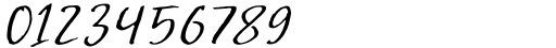 Greatest Fortune Script Font OTHER CHARS