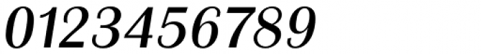 Grenoble Serial Italic Font OTHER CHARS