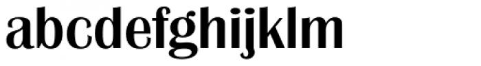 Grenoble Serial Medium Font LOWERCASE
