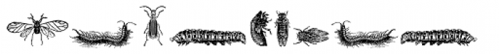 Grissom Two Font UPPERCASE