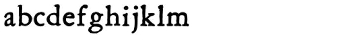 Grit Primer Bold Font LOWERCASE