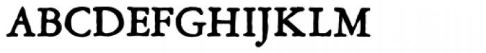 Grit Primer Titling Bold Font UPPERCASE