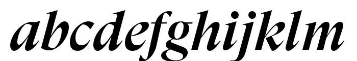 GT Super Display Medium Italic Font LOWERCASE