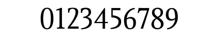 Gupter Regular Font OTHER CHARS