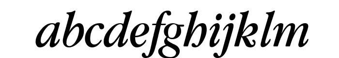 Guru Italic Font LOWERCASE